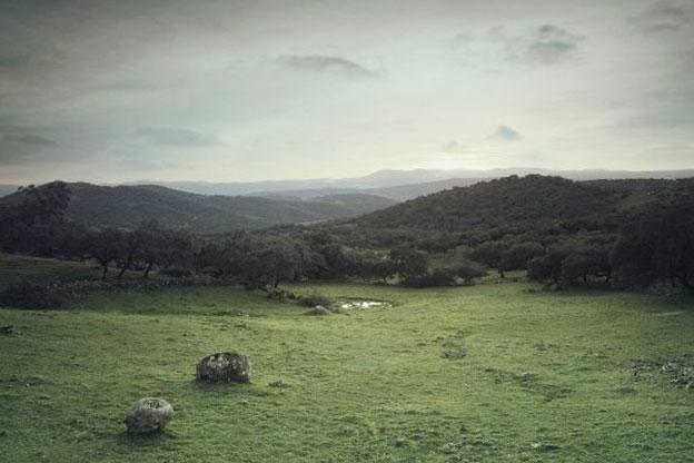 Monfrague y Valle de Alagón