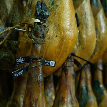 precintos-de-calidad-jamones-ibericos